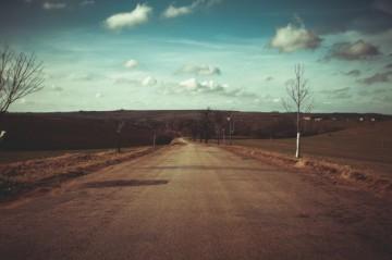 el-camino-despues-del-invierno_385-19321339