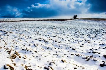 campo-nevado_1160-60